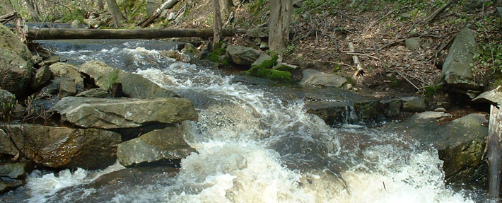 Monoosnoc Brook – Photo by Ed Himlan