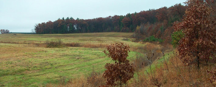 Field near Shepley Hill in Devens, MA