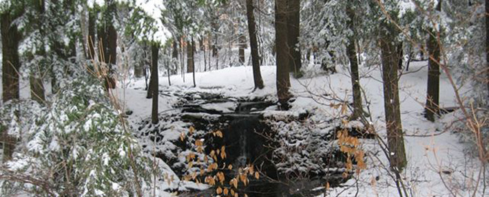 A Mt. Wachusett stream in winter - Photo by Mary Marro