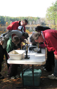 Field study during NRWA's River Classroom – Photo by Nancy Ohringer