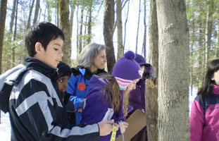 Measuring tree diameter with NRWA's Scientist in Residence
