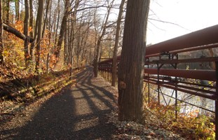 West Fitchburg Steamline Trail in Fitchburg, MA - Photo by Allyssa Kvenvold